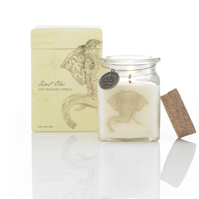 Sweet Shai Candle flame_elephant